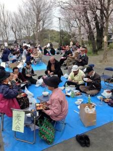 4月1日(金曜日)に社協のお花見に参加させていただきました。