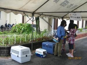 鴨志田第一小学校地域防災拠点の防災活動