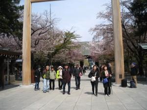 5.桜咲く靖国神社