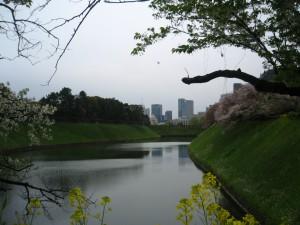 2.千鳥ヶ淵から東京タワーと議事堂を望む